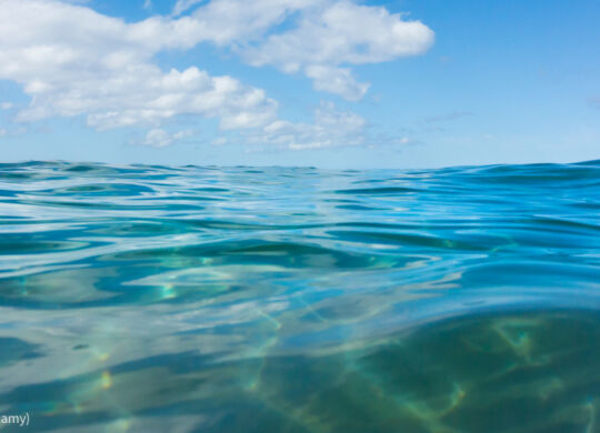 DY8ERP Ripples on the Pacific Ocean surface near Kamaole Beach on a calm day on the island of Maui in the state of Hawaii USA. Image shot 03/2014. Exact date unknown. (© Bill Brooks/Alamy)